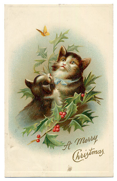 Cats with holly and butterfly