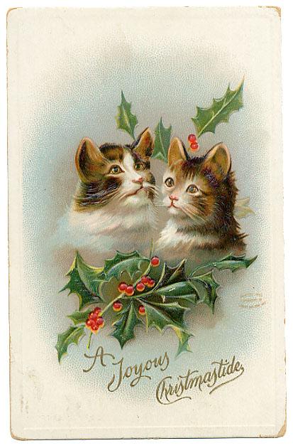 Joyous Cats with holly