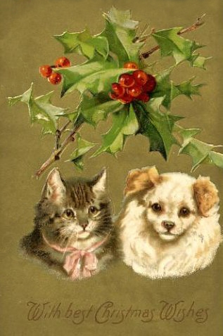 Christmas Cat & Dog