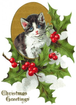 Kitten and holly