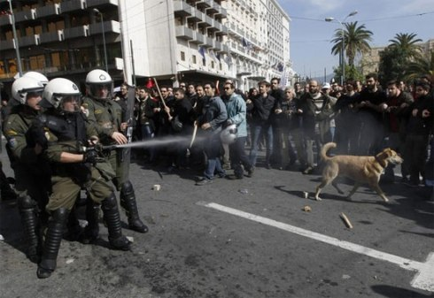 Riot dog confronts riot police.